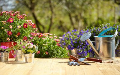 Turn Your Small Yard Into a Glorious Garden With These 5 Simple Ideas